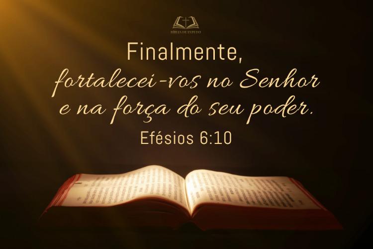 Efésios 6:10 Finalmente, fortalecei-vos no Senhor e na força do seu poder