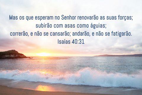 Isaías 40:31 Mas os que esperam no Senhor renovarão as suas forças