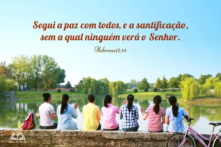 Hebreus12:14 | Buscai a paz com todos e a santificação