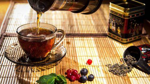 Criação de Deus: Os maravilhosos efeitos das folhas de chá