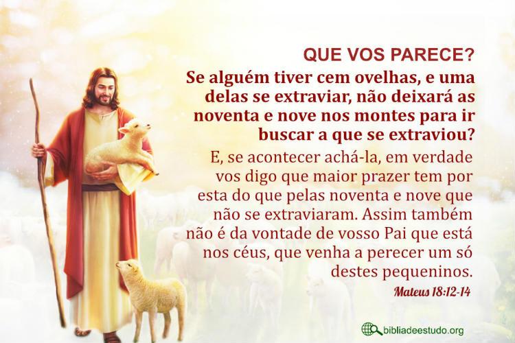 Mateus 18:12-14 | Parábola da ovelha perdida na bíblia