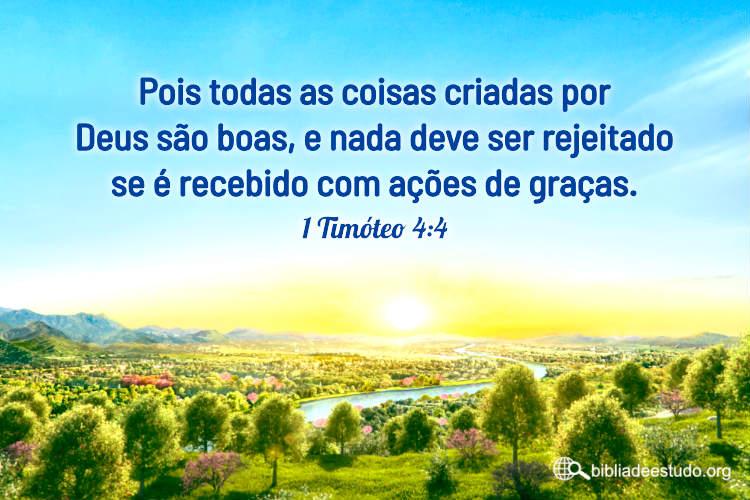1 Timóteo 4:4 | Todas as coisas criadas por Deus são boas