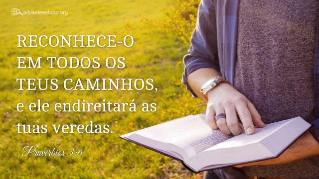 Versículo do Dia: Provérbios 3:6 Estudo