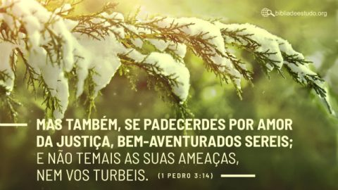 Versículo do Dia: 1 Pedro 3:14 Estudo