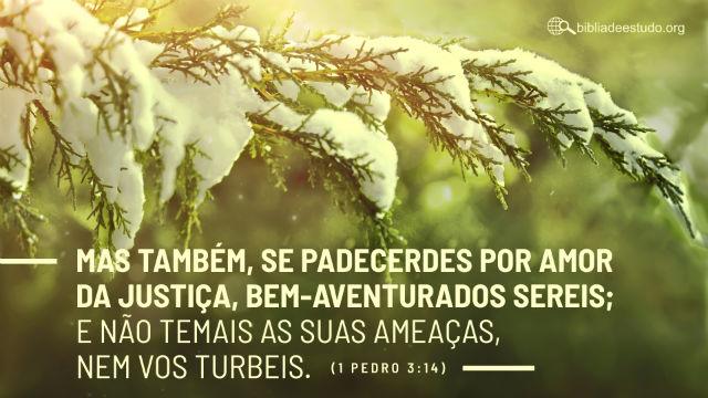 Versículo do Dia: Mas também, se padecerdes por amor da justiça, bem-aventurados sereis; e não temais as suas ameaças, nem vos turbeis.1 Pedro 3:14