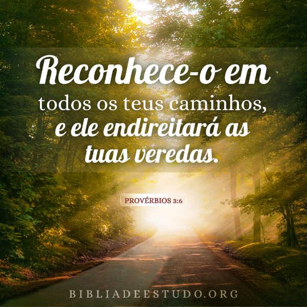 Provérbios 3:6 - Somente Deus guia nosso caminho