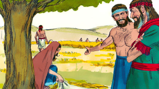História de Rute na Bíblia - Boaz Favorece Rute