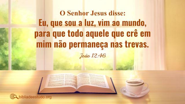 Versículo do Dia: João 12:46 Estudo