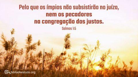 Versículo do Dia: Estudo do Salmo 1:5