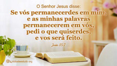 Versículo do Dia: Estudo sobre João 15:7