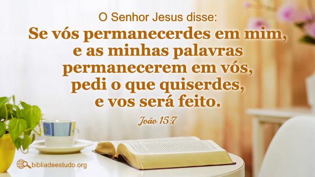 """João 15:7 """"Se vós permanecerdes em mim, e as minhas palavras permanecerem em vós, pedi o que quiserdes, e vos será feito."""""""