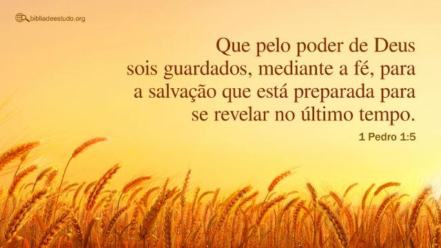 1 Pedro 1:5 Que pelo poder de Deus sois guardados, mediante a fé, para a salvação ...