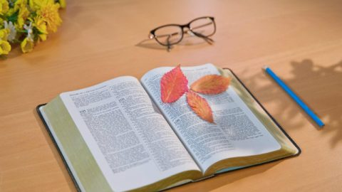 Conhecendo a Bíblia: todas as palavras de Deus estão na Bíblia?