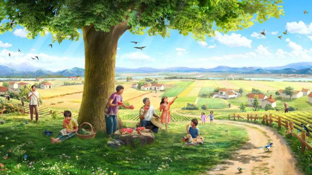 História: uma semente, a terra, uma árvore, a luz do sol, as aves cantantes e o homem